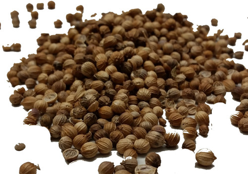 Coriander Seeds Whole Image, Chillies on the Web