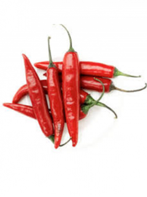 Tehrani Chilli Image Chillies on the Web