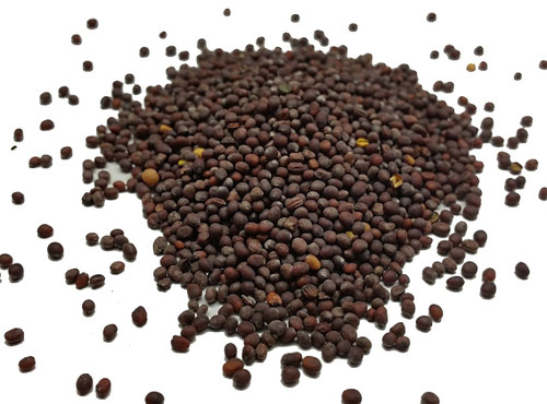 English Mustard Seeds Image by Chillies on the Web