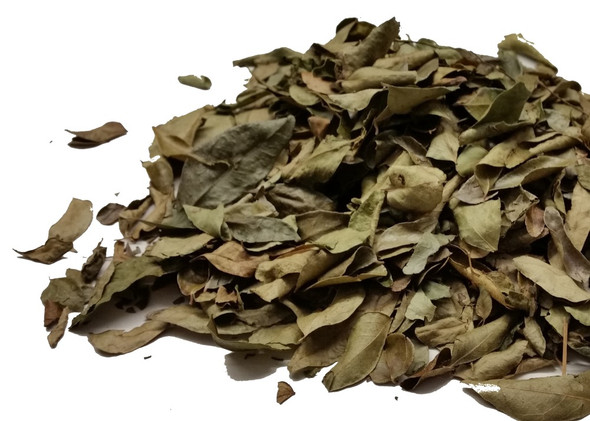 Curry Leaves/Sweet Neem Leaves Image, Chillies on the Web