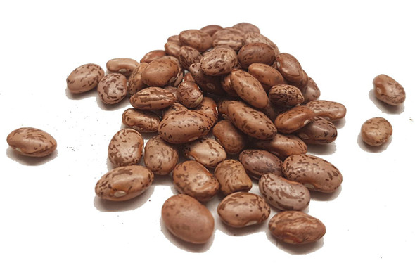 Dried Pinto Beans Image by Spices on the Web