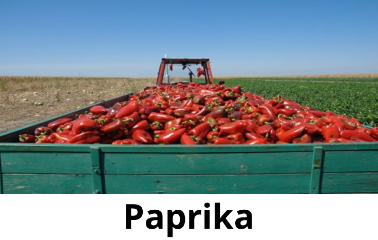 paparika,smokedpaprika,sweetpaprika,hotpaprika,wheretobuypaprika,hungarianpaprika,