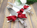 Embrace Wedding Cake Knife and Server with Engraving, Custom Color Bows and Rhinestones