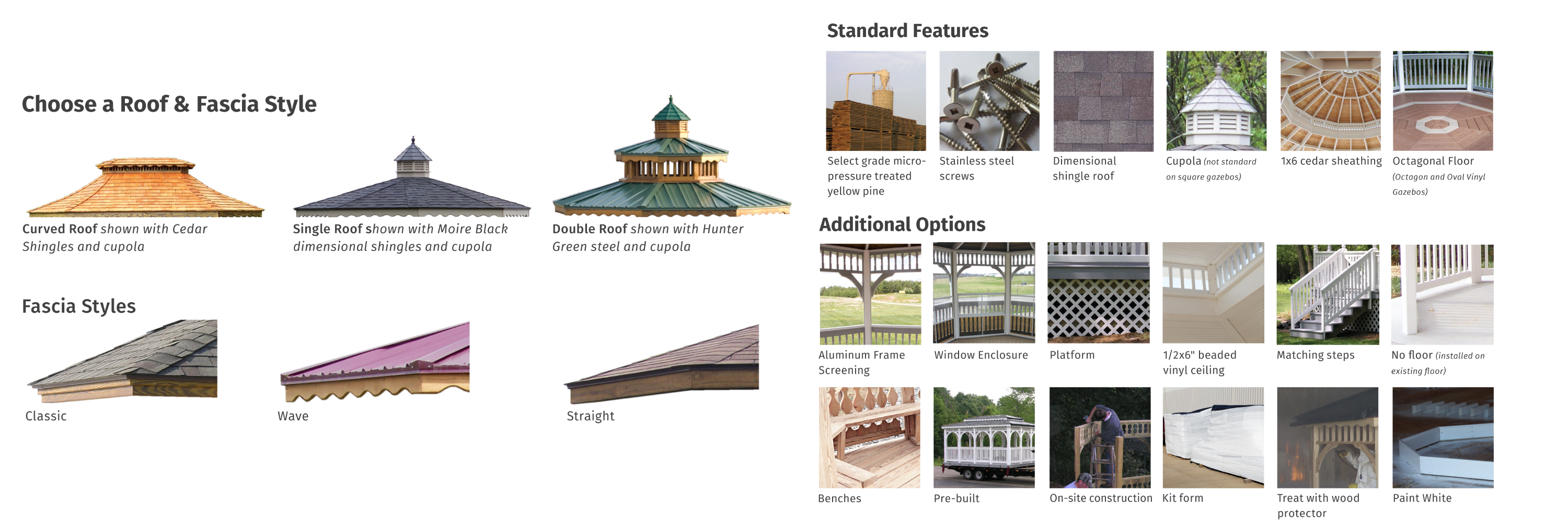 roof-and-features-and-options-for-website-2019.png