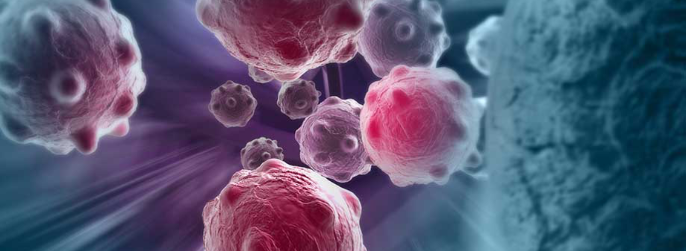 Human immune system attacking cancer cells