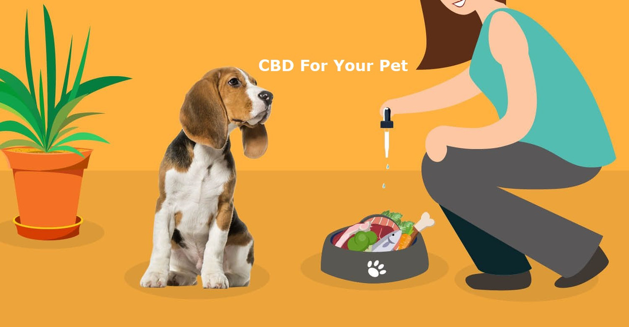 Pet CBD Oil in Sauk City