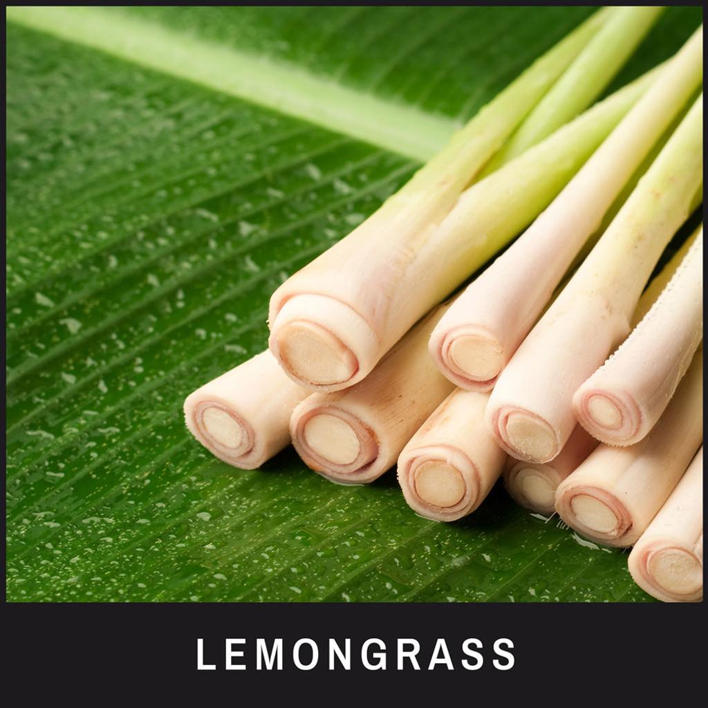 Eye Envy On the Spot ingredients: Lemongrass