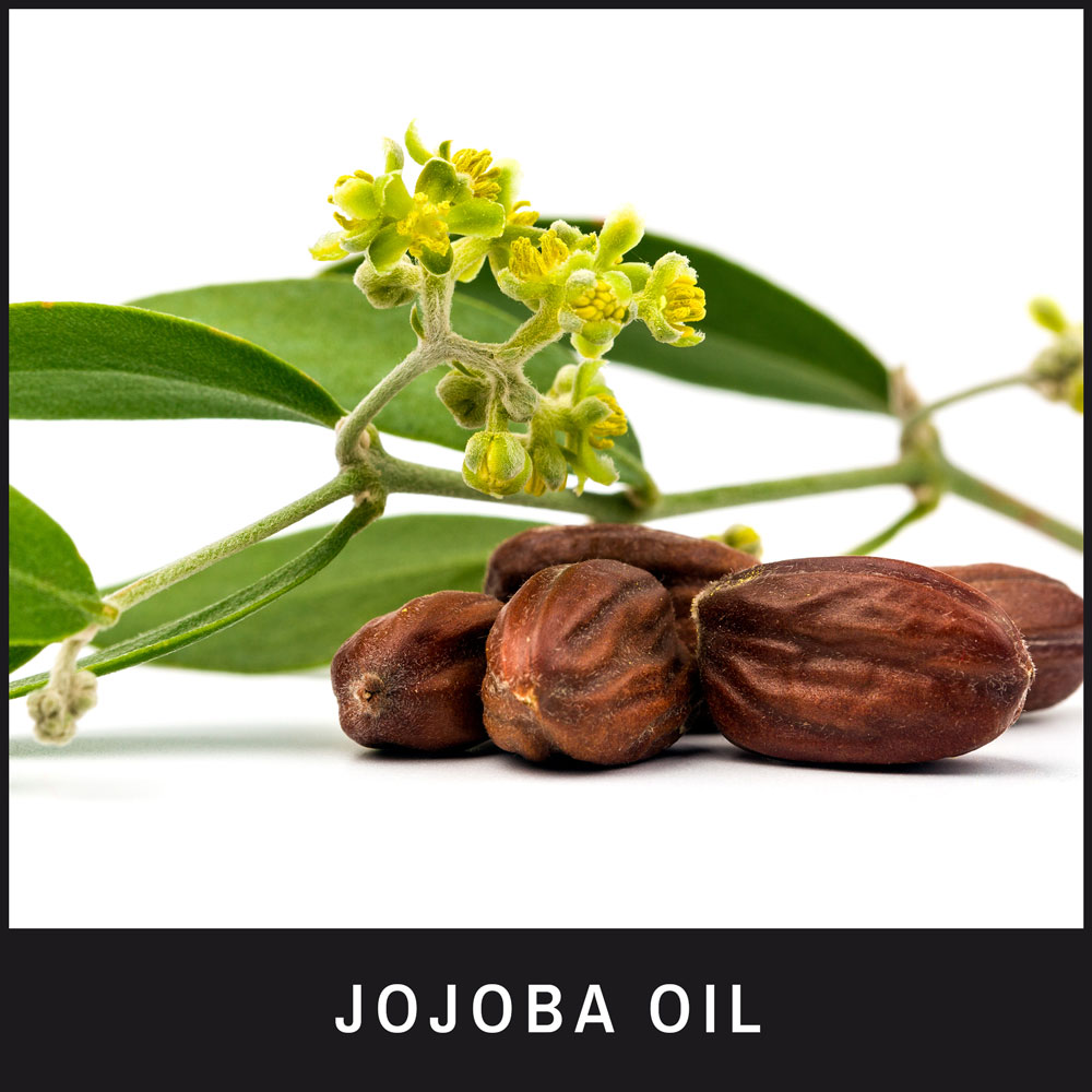 Jojoba Oil eases the effects of dry skin conditions