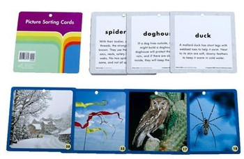 Science Fusion Grade K Picture Sorting & Vocabulary Cards