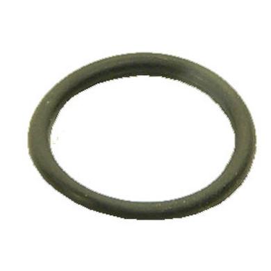 """1"""" PAP O-Ring"""