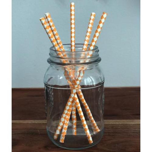 Orange Harlequin Biodegradable Paper Straws