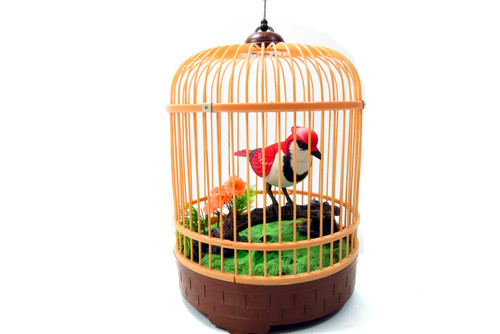 Singing & Chirping Bird In Cage - Realistic Sounds & Movements (Red)- Back To Nature & Relax