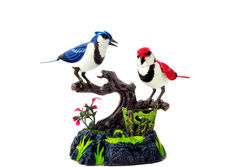 Singing & Chirping Birds - Realistic Sounds And Movements (Blue Jays)- Relax Your Mind