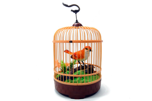 Singing & Chirping Bird In Cage - Realistic Sounds & Movements (Orange)- Relax Your Mind