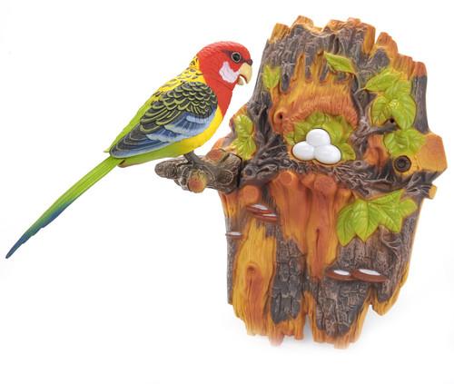 Singing & Chirping Bird Wall Mount- Little Friend To Brighten Your Room