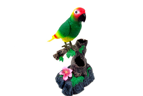 Talking Parrot- Sound Sensor Technology Records Voice