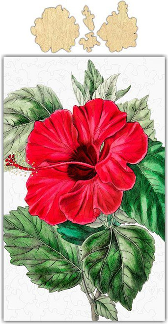 Whimsical Hibiscus Jigsaw Puzzle