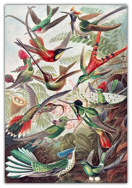 Haeckels Hummingbirds Jigsaw Puzzle