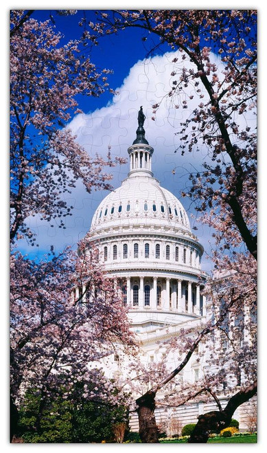 U.S. Capitol in Cherry Blossoms Jigsaw Puzzle