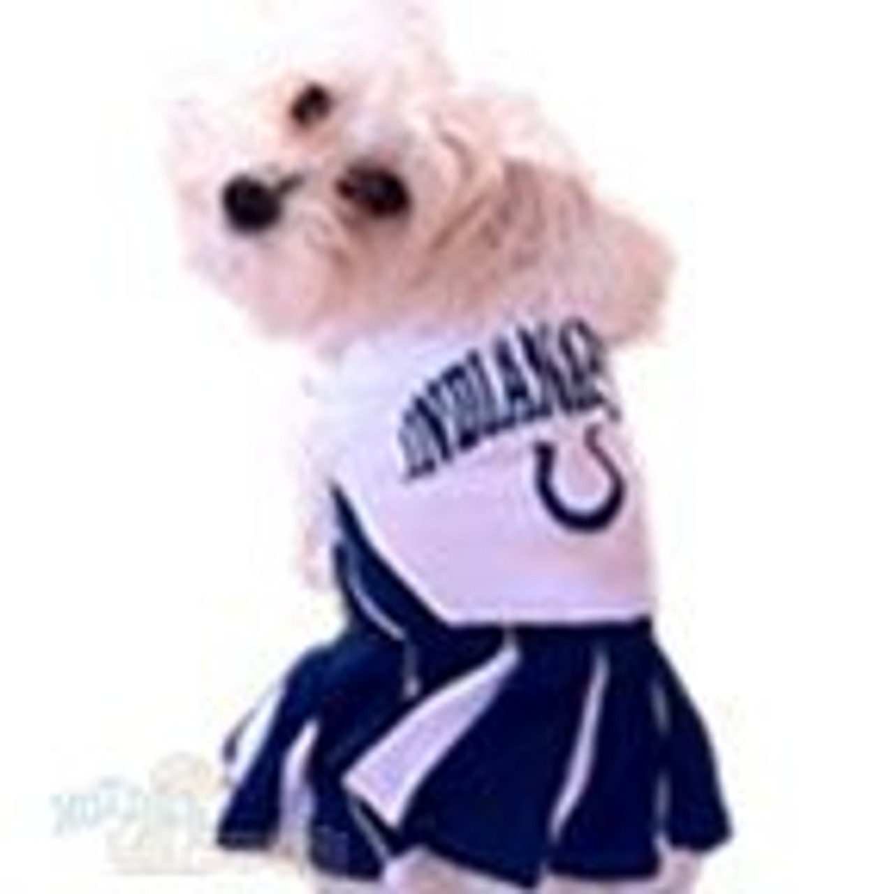 Indianapolis Colts Custom Pet Id Dog Tag Personalized w// Name /& Number