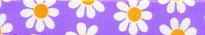 Lavender Daisy Coupler Dog Leash
