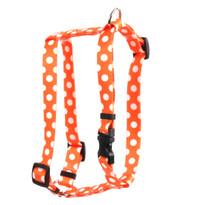 "Tangerine Polka Dot Roman Style ""H"" Dog Harness"