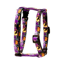 "Scary Night Roman Style ""H"" Dog Harness"