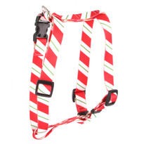 "Peppermint Stick Roman Style ""H"" Dog Harness"