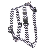 "Chevron - Licorice Roman Style ""H"" Dog Harness"