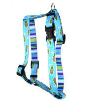 "Blue Paisley Roman Style ""H"" Dog Harness"