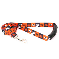 Pumpkin Patch EZ-Grip Dog Leash