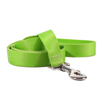 Solid Spring Green Dog Leash