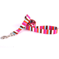 Multi-Stripe Dog Leash
