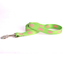 Green and Pink Skulls Dog Leash