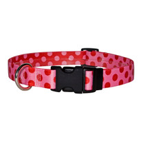 Valentine Polka Dot Dog Collar