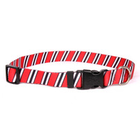 Team Spirit Red, Black and White Dog Collar