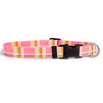 Madras Pink Dog Collar