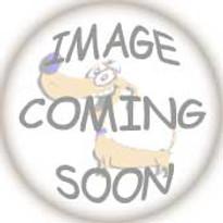 Arizona Diamondbacks Dog Harness