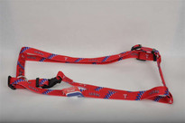 Texas Rangers Dog Harness