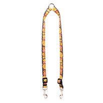 Pumpkin Party Coupler Dog Leash