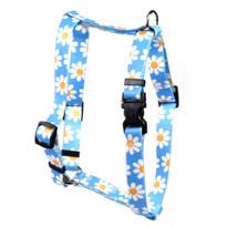 "Blue Daisy Roman Style ""H"" Dog Harness"
