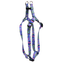 Paisley Power Step-In Dog Harness