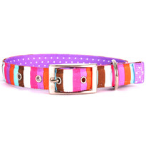 Multi-Stripe Uptown Dog Collar