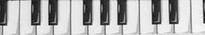 Piano Keys Waist Walker