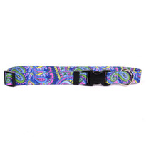 Paisley Power Break Away Cat Collar