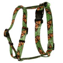 Monarch Swirl Roman Style H Dog Harness
