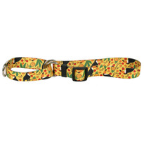 Fruity Tucan Martingale Dog Collar