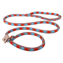 Orange and Aqua Rope Slip Leash For Dogs