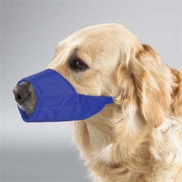 Nylon Dog Fashion Color Muzzle