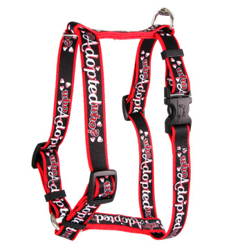 """Who Adopted Who Roman Style """"H"""" Dog Harness"""